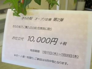 きもの桜 第二弾 009